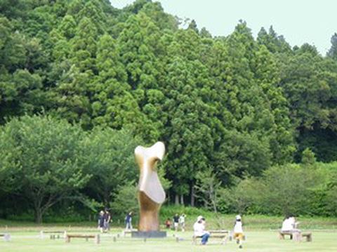niwanowa_bench1